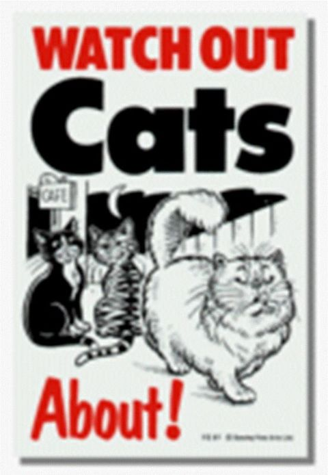 CATS ABOUT - CAT SIGN